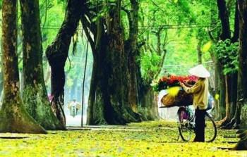 Top 10 thành phố tuyệt vời nhất Châu Á
